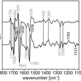 Light-dark FTIR difference spectra of aureochrome 1 in the