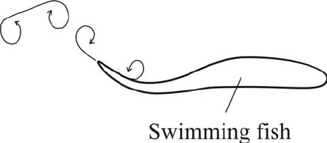 Schematically sketched fish with propulsion by undulating