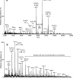 positive ion reflectron maldi tof mass spectra of a glycans from fraction p9 [ 850 x 969 Pixel ]
