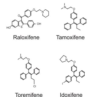 Chemical structures of estradiol and some SERMs