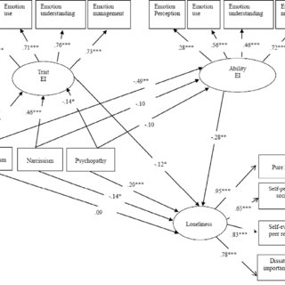 (PDF) The role of the Dark Triad traits and two constructs