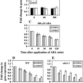 A model of the regulation of abiotic stress signaling by