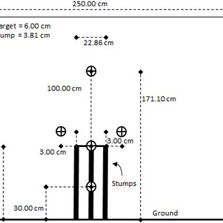 10. The maximal multi-stage 20-m shuttle run test.
