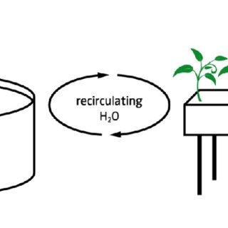 2. Simplified Process Flow Diagram of a Recirculating
