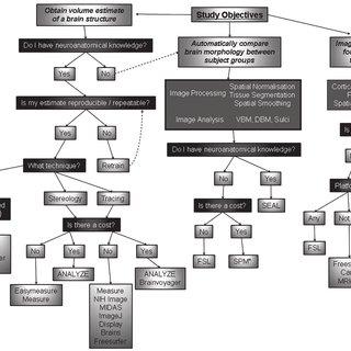 (PDF) Measurement of brain volume using MRI: Software