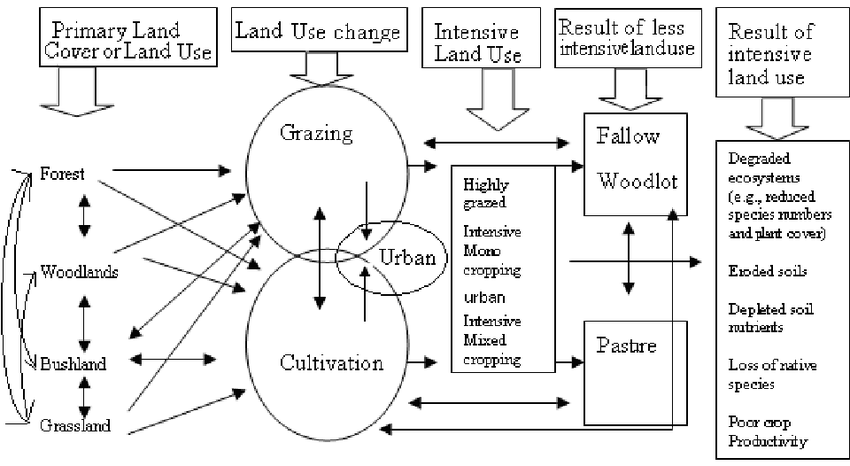 Schematic representation of land use sequences in East