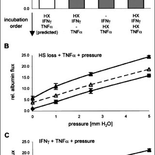 Four-factor system; HS loss, IFN, TNF, and increased