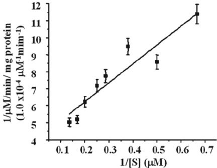 Lineweaver–Burk plot of initial rate verses SpFl substrate
