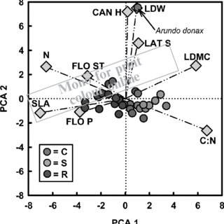 The CSR plant strategy spectrum of 30 Poaceae with alpine