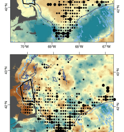 overlay of spatial distribution of north atlantic right whale relative abundance spue  [ 850 x 1642 Pixel ]