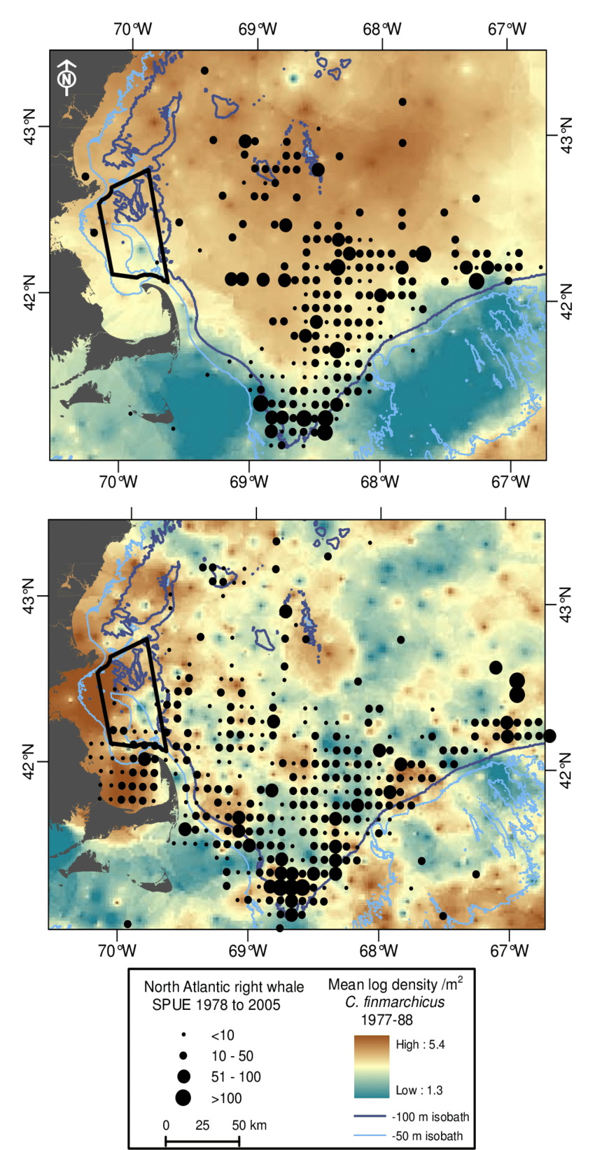 hight resolution of overlay of spatial distribution of north atlantic right whale relative abundance spue