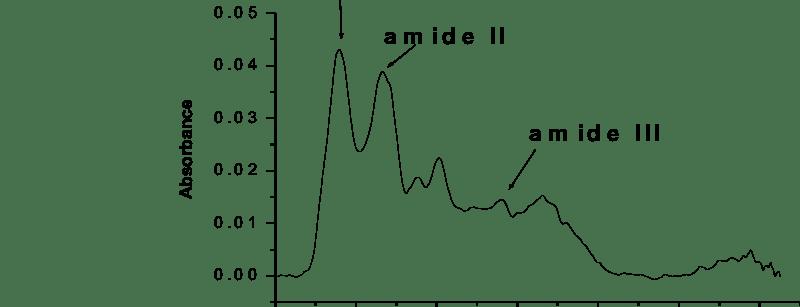 Simona Cavalu_Fig. 4. ATR FTIR spectrum of fibrinogen type