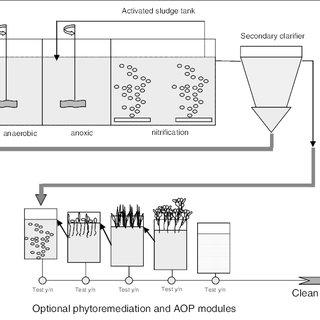 (PDF) Using phytoremediation technologies to upgrade waste