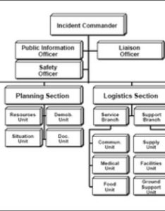 Ics basic organization chart level from fema incident command system also rh researchgate