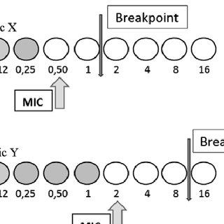 (PDF) Reading and understanding an antibiogram