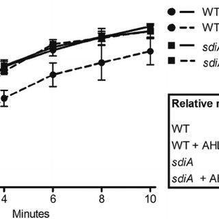 AHL quorum-sensing signals reduce  phage superinfection