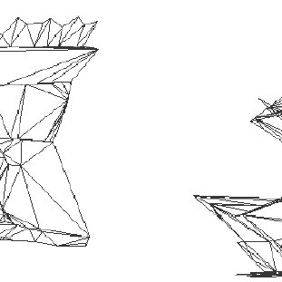 Frontal and side view of the triangulated surface mesh