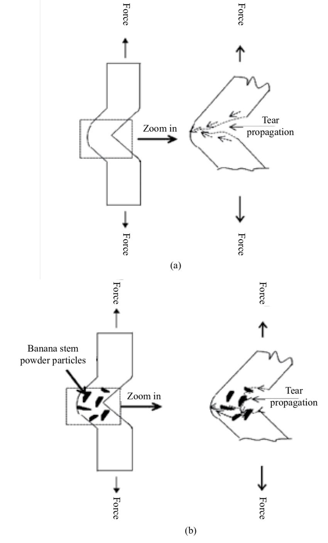 Schematic representation of crack propagation of the