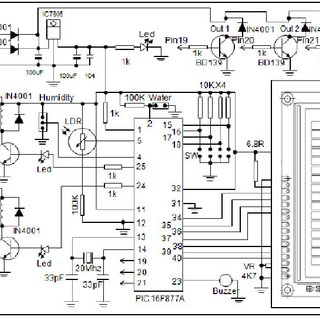 Double Humbucker Wiring Diagram Double Neck Wiring