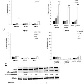 (PDF) Combining AKT inhibition with chloroquine and
