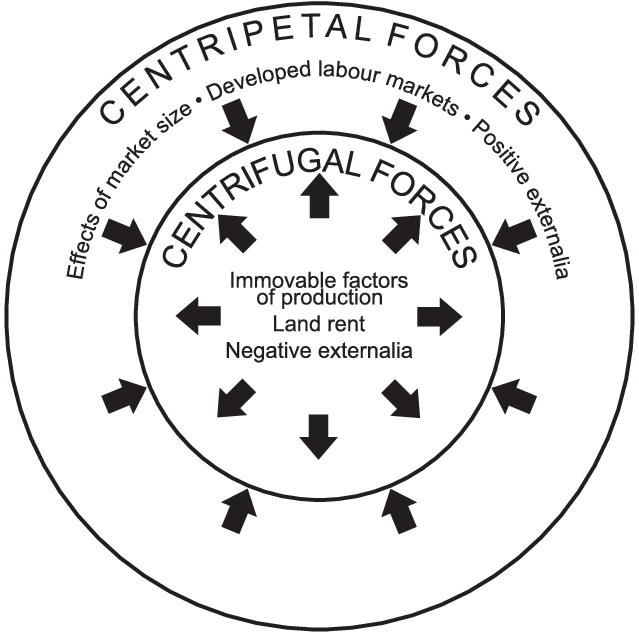 Centripetal and centrifugal forces in the model of the new
