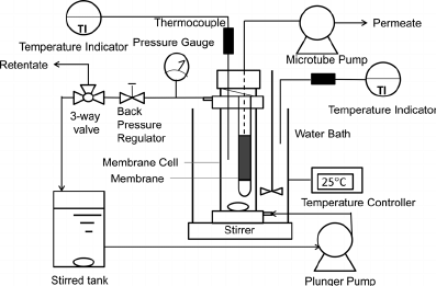 Schematic diagram of the experimental apparatus for
