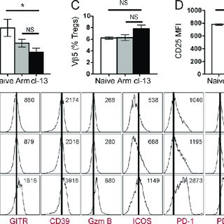 LCMV-specific CD8 T cells re- gain effector function upon