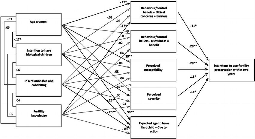 Final structural equation modeling (SEM)-model for the