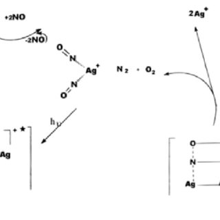 Scheme 2: Mechanism for the photodecomposition of NO into