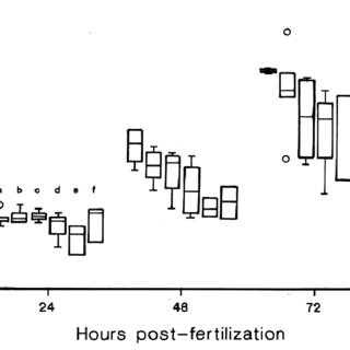 (PDF) Use of the Zebrafish Embryo Toxicity Test for Risk