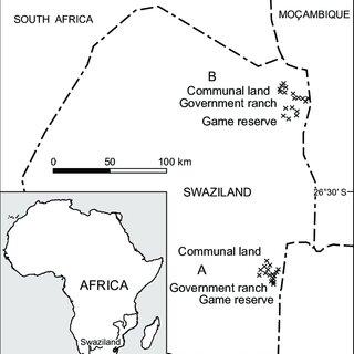 (PDF) Solomon. T Beyene., V. Mlambo1, B. J. Dlamini1., A.M