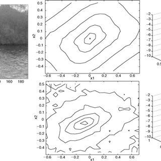 Bivariate histograms of wavelet coef fi cients associated