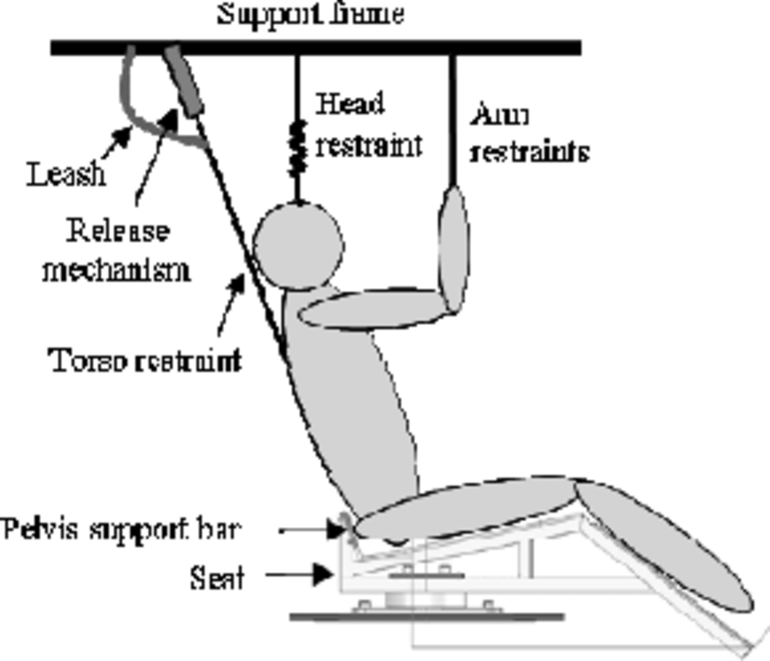 Support and restraint systems to control subject position