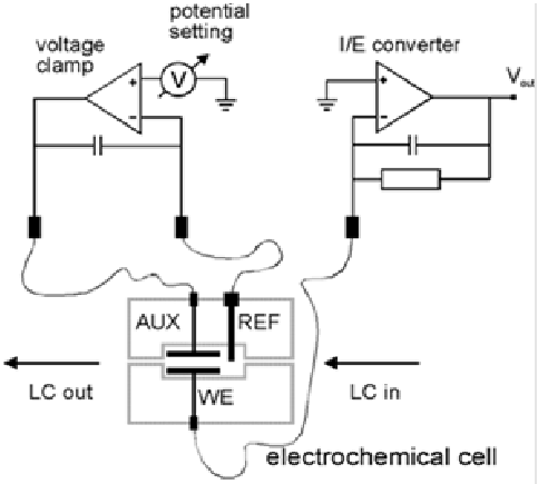 Schematic representation of an electrochemical cell with a