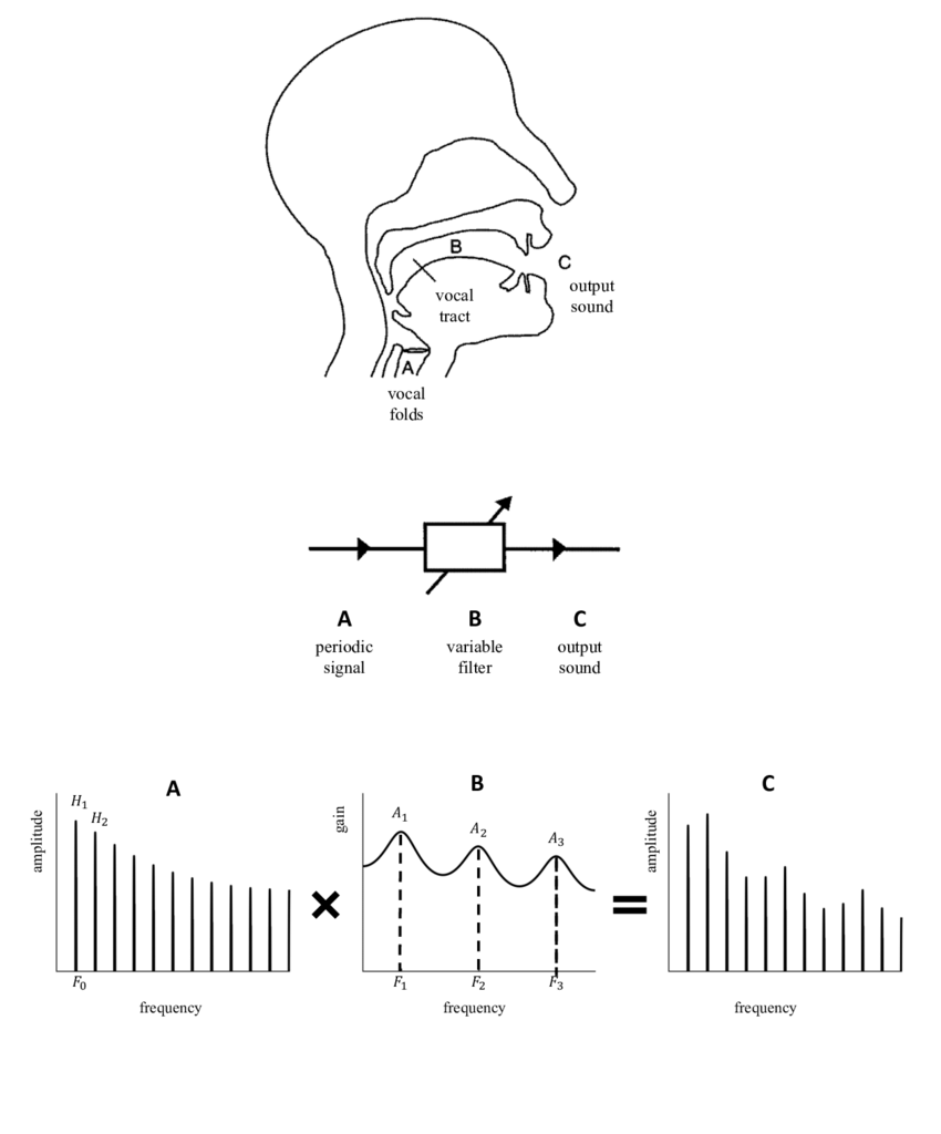 1: A schematic of the speech production system for a