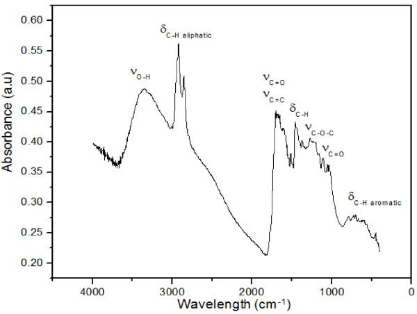 FTIR spectrum of beer-waste-derived biochar obtained by