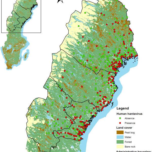 Human hantavirus infections in Sweden. | Download Scientific Diagram