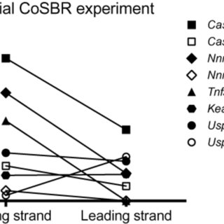 Streamlined 7-day hands-on CoSBR protocol. Most steps are