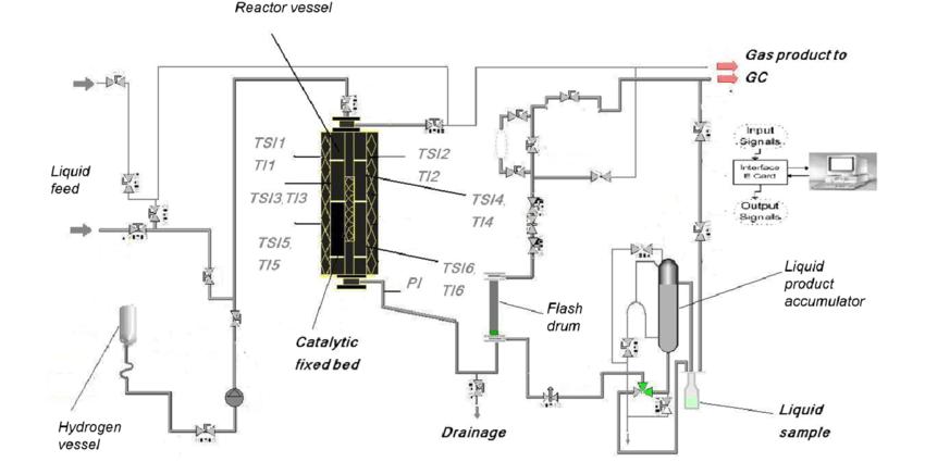 Schematic process flow diagram of HDS pilot plant