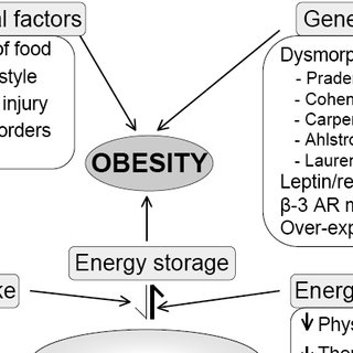 (PDF) Obesity: Pathophysiology and Clinical Management