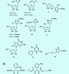 structures of nucleoside like inhibitors of odcase and non nucleoside odcase inhibitors  [ 850 x 1066 Pixel ]
