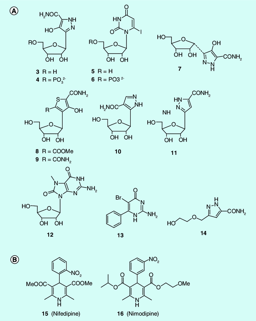 medium resolution of structures of nucleoside like inhibitors of odcase and non nucleoside odcase inhibitors