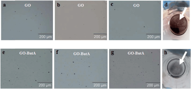 Optical Micrographs Of Go And Go Buta Respectively In Epoxy Resin A And E Just After Sonication B And F After 7 Days C And G After 14 Days