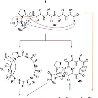 Chemical structures of (a) quinoline containing drugs and
