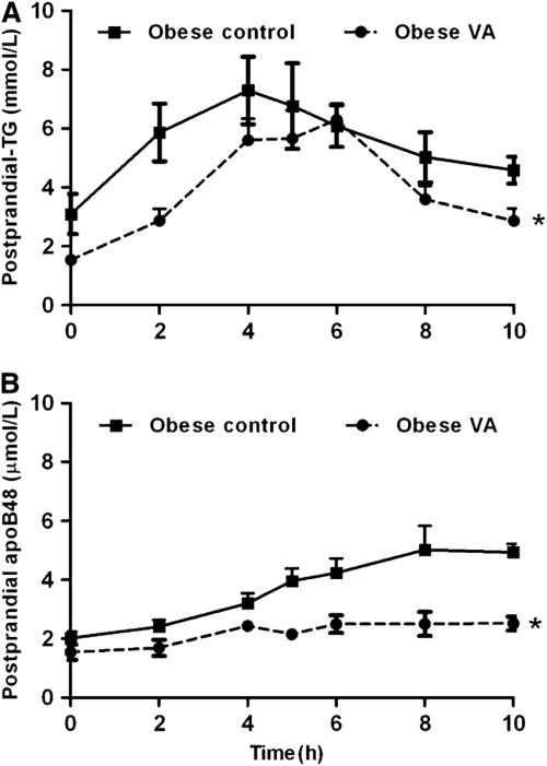 small resolution of postprandial response following an oral fat challenge in obese jcr la cp rats fed
