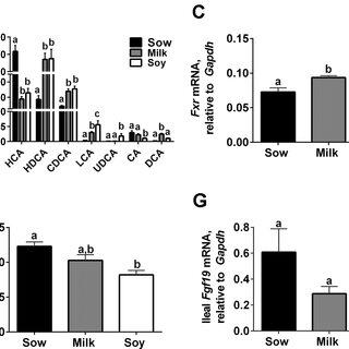 (PDF) Infant Formula Feeding Increases Hepatic Cholesterol