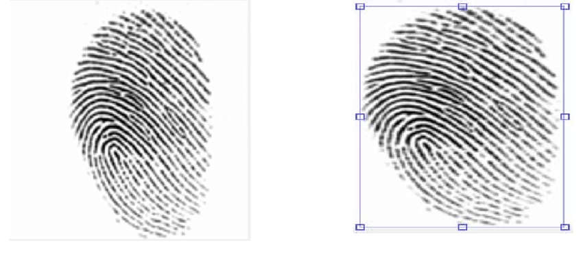 Example of ROI Usually, Latent fingerprints are collected
