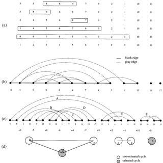 (PDF) Transforming Cabbage into Turnip: Polynomial
