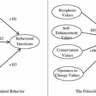 Examples of attitude-behavior and value-behavior