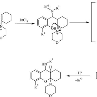 Possible mechanism for the synthesis of bicyclic
